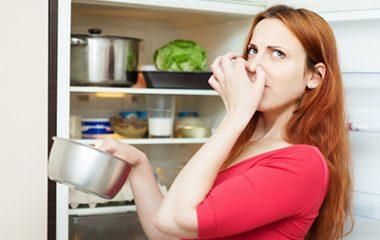 מה גודל לי במקרר?